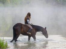La jeune femme sur un cheval brun entre dans le lac images libres de droits