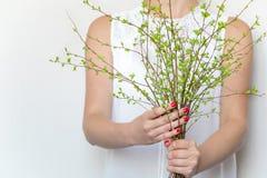 La jeune femme tenant un groupe de ressort vert s'embranche Concept élégant léger de photo, d'eco et de beauté Photos stock