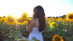 La jeune fille avec le bouquet des fleurs dans des mains marchant le long des tournesols mettent en place Éclat de Sun au fond Su banque de vidéos