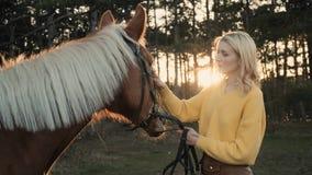 La jeune fille dans le sweather jaune étreint le cheval brun masculin doux dans le mouvement lent du bois banque de vidéos