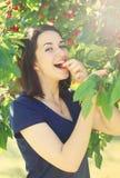 La jeune fille mange la cerise du cerisier images libres de droits