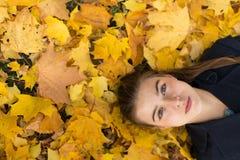 La jeune jolie fille et l'automne poussent des feuilles en parc heureux photos stock