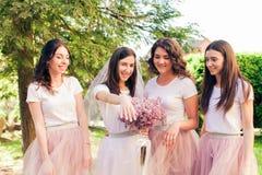 La jeune mariée et les amies ont l'amusement Photographie stock