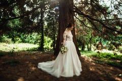 La jeune mariée renversante dans la robe élégante pose en parc vert images stock