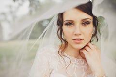 La jeune mariée avec les yeux noisette semble la position merveilleuse sous un voile Images stock