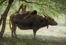La joie des agriculteurs Thaïlande d'enfants Images libres de droits