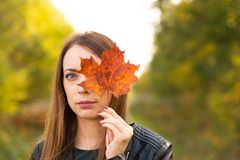 La jolie femme avec l'érable de jaune d'automne part sur le fond de forêt photo stock