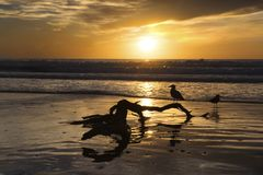 La Jolla étaye le coucher du soleil images stock