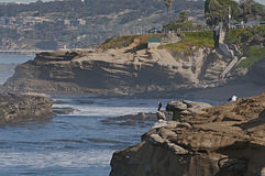 La Jolla, Калифорния Стоковое Изображение RF