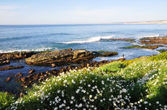 La Jolla Beach. This picture was taken in San Diego, Southern California Stock Photo
