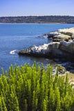 La Jolla beach Stock Photo