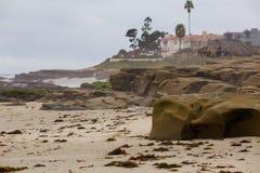 La Jolla Beach San Diego California Royalty Free Stock Images