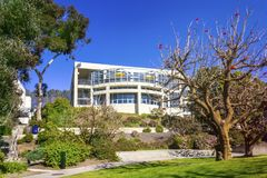 La Jolla, California, los E.E.U.U. - 4 de abril de 2017: Campus de la Universidad de California San Diego Flor desnudo del árbol  Foto de archivo libre de regalías