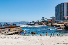 La Jolla Children`s Pool with Surrounding Hotels Royalty Free Stock Images
