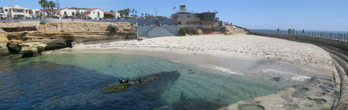 La Jolla Childrens Pool. A view of Children's Pool and Harbor Seal tenants as seen from the end of the walkway built to protect the waters for children to swim Royalty Free Stock Image