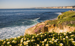 La Jolla Cliffs Stock Photos