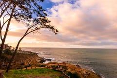 La Jolla Cove arkivfoto