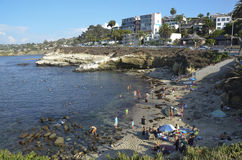 La Jolla Cove. Swimming in San Diego California royalty free stock images