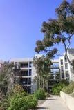 La Jolla Kalifornien, USA - April 4, 2017: Universitetsområde av universitetet av Kalifornien San Diego, USA Royaltyfria Bilder