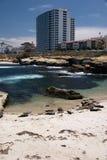 La Jolla Shoreline. Look close and you can see seals sunbathing on the beach at La Jolla, California stock photo
