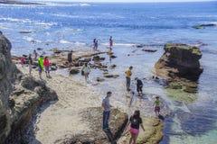 La Jolla tidvattentips med folk som tycker om Sunny Day royaltyfri bild