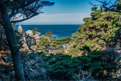 Diversity Graces the Coastal Landscape of California. From La Jolla to Carmel you will find this State`s display of Nature some of the most inspiring anywhere in Stock Image