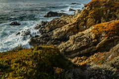 Diversity Graces the Coastal Landscape of California. From La Jolla to Carmel you will find this State`s display of Nature some of the most inspiring anywhere in Stock Photography