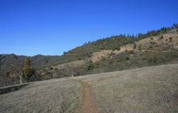 La Jolla Trail Stock Photos