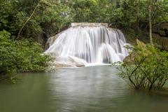 La jungle dans le Cascadas De Roberto Barrio Photographie stock libre de droits