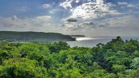 La jungle donnent sur Image libre de droits