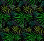La jungle part de la texture verte Photo libre de droits