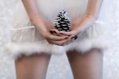 la jupe courte sexy de fille de fourrure a garni Noël Images stock