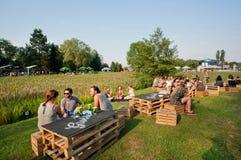 La juventud se divierte con los amigos y las bebidas en partido al aire libre Fotografía de archivo libre de regalías