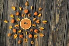 La ketmie orange et sèche fleurit sur le fond en bois images libres de droits