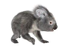la koala de la representación 3D refiere blanco foto de archivo