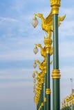 La lámpara de oro del cisne Fotografía de archivo libre de regalías