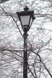 La lámpara en el parque Foto de archivo libre de regalías