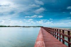 La línea onda del puente y del bambú de Brown del retraso previene eros costero Fotografía de archivo