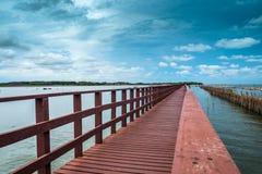 La línea onda del puente y del bambú de Brown del retraso previene eros costero Fotografía de archivo libre de regalías