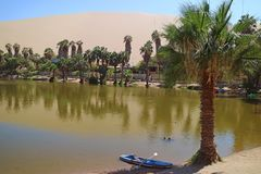La lagune d'oasis au village de Huacachina entouré par beaucoup de palmiers avec la dune de sable à l'arrière-plan, AIC, Pérou, A images stock