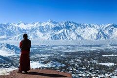 La lama maschio ammira la vista superiore della valle di Leh immagine stock libera da diritti