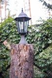 La lampada costa su un abbattimento di legno fotografia stock libera da diritti