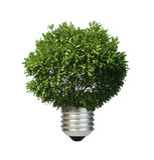 La lampada ha reso a ââof l'albero verde. Concezione di ecologia Immagini Stock