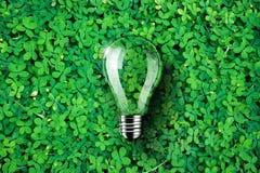 La lampadina è sul fondo dell'erba verde, l'idea di concetto, illustrazione Immagini Stock