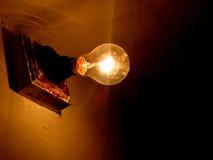 La lampadina Immagine Stock