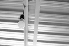 La lampadina che appende al fotografia stock