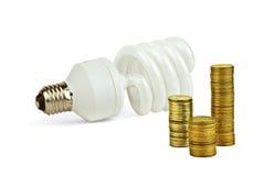 La lampadina economica risparmia i soldi Fotografia Stock