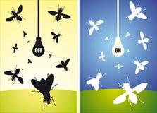 La lampadina ed il volo vola Fotografia Stock Libera da Diritti