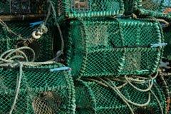 La langosta verde enjaula la sequedad en orilla imágenes de archivo libres de regalías