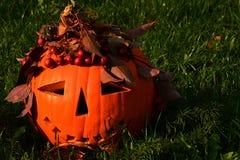 La lanterna fuori scolpita sorridente di Halloween sgorbiata positivo Jack O con le bacche rosse e la caduta va come corona Fotografia Stock Libera da Diritti